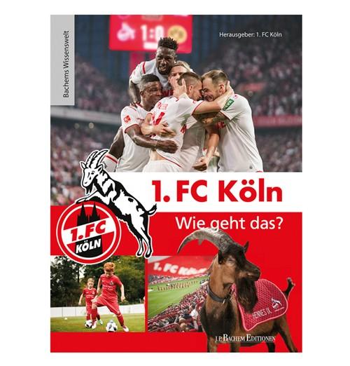 1. FC Köln - Wie geht das?